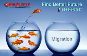 migrate to other country